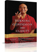 Turning Confusion into Clarity