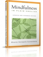 Mindfullness in Plain English